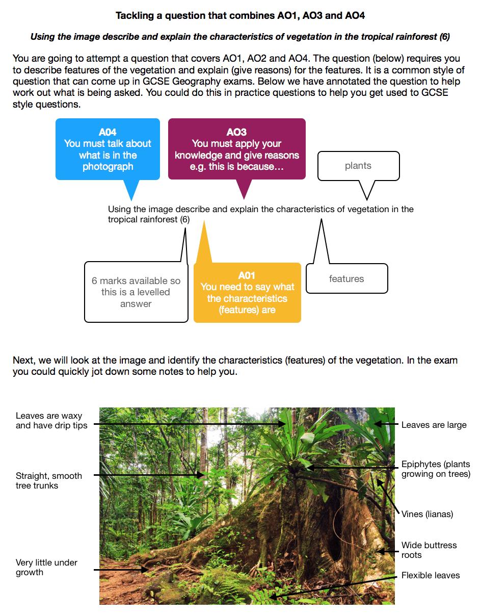 Exam Question Modelling - AO1, AO3 and AO4 - Internet Geography
