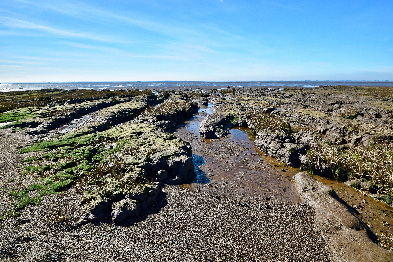 Mudflats along the Humber Estuary.