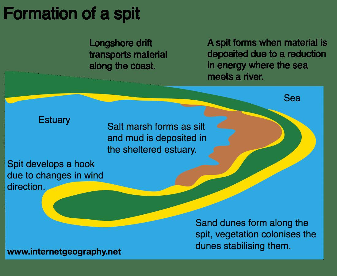 Landforms of coastal deposition - Internet Geography