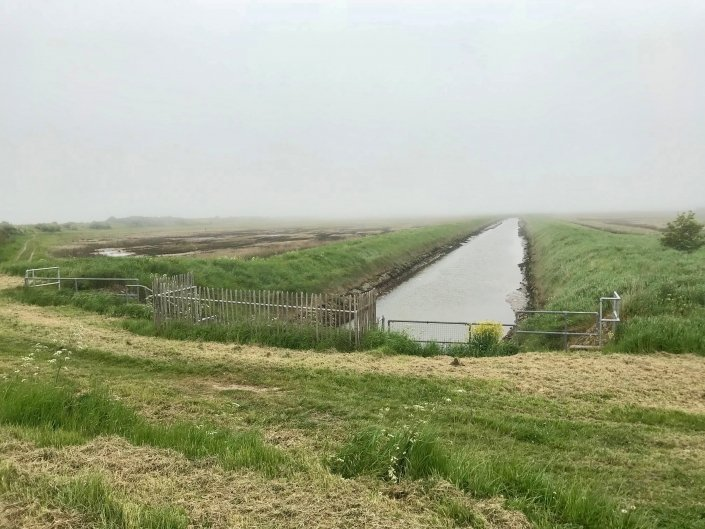 Embankment at Donna Nook