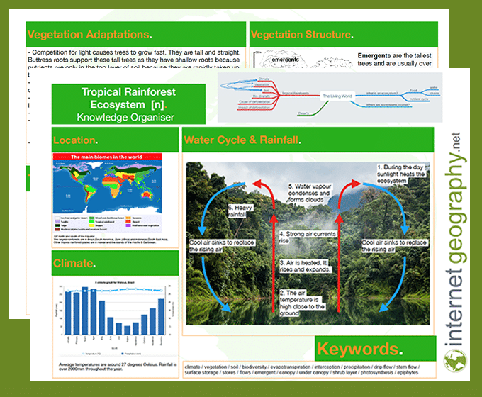 tropical rainforest knowledge organiser