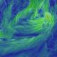 Storm Ali - Wind