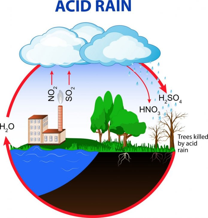 Toxic Leaded  And Caused The Acid Rain