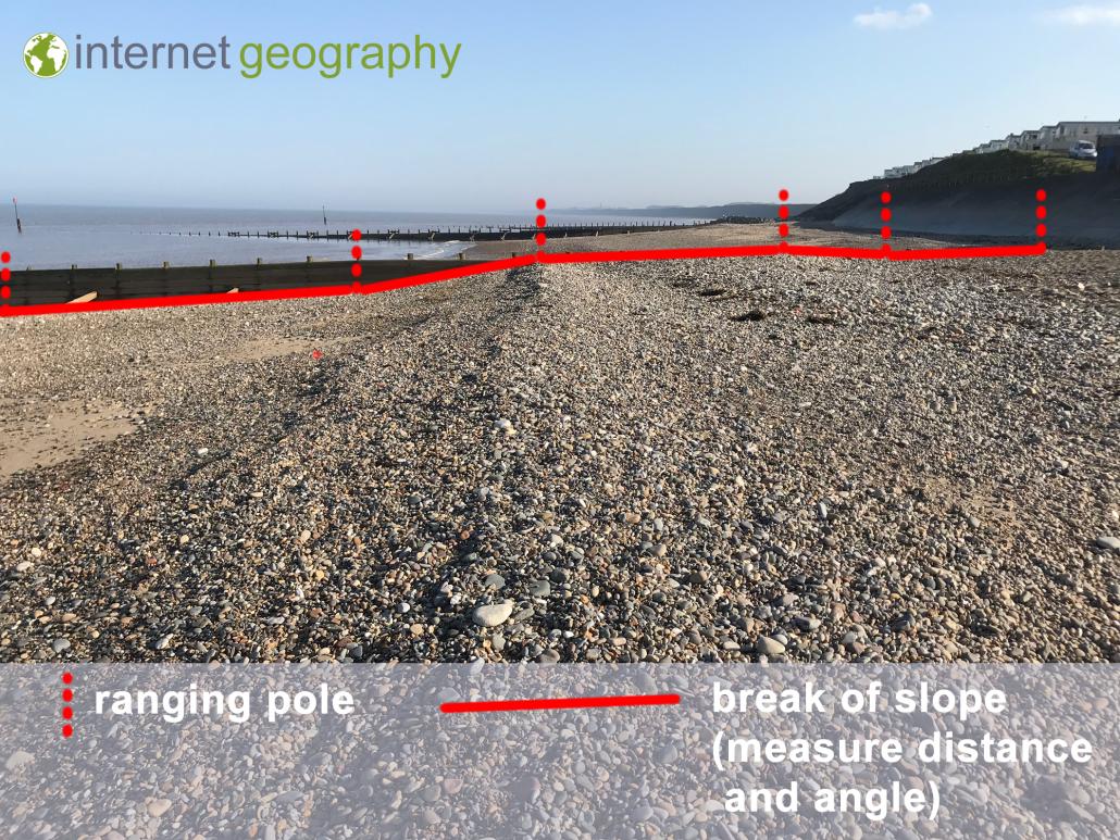 Beach Transect