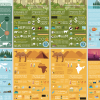 Geography Infographics Set 2
