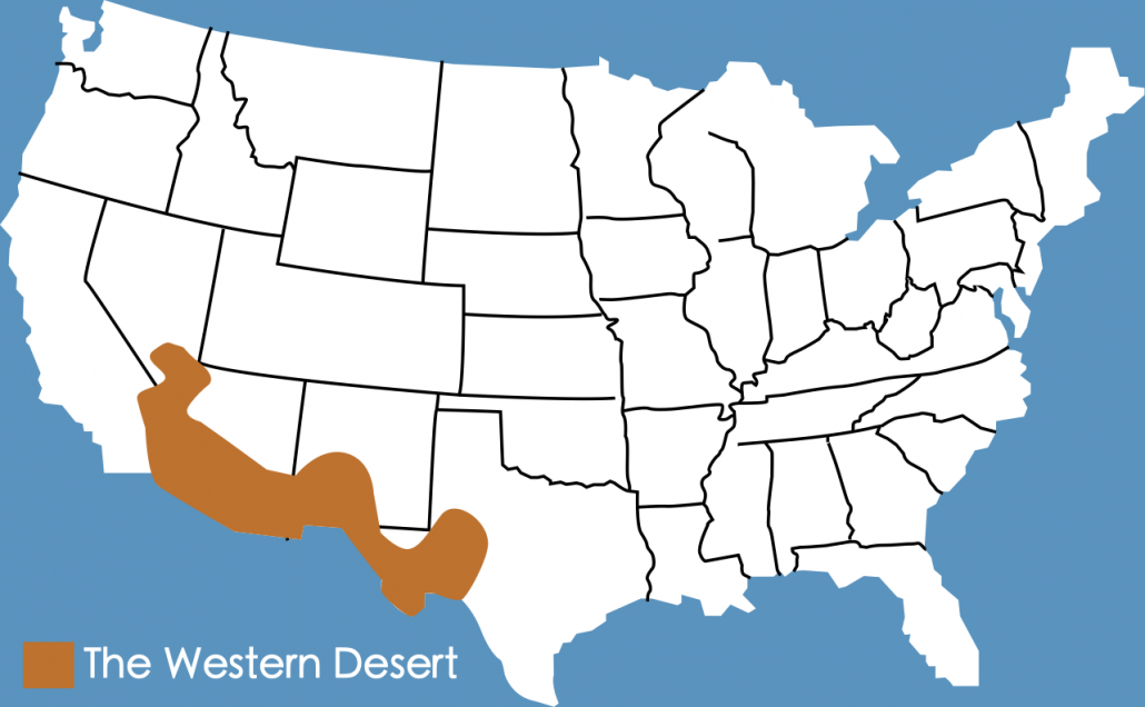Picture of: Western Desert Case Study Internet Geography