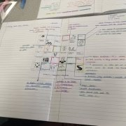 Living World Revision Grids