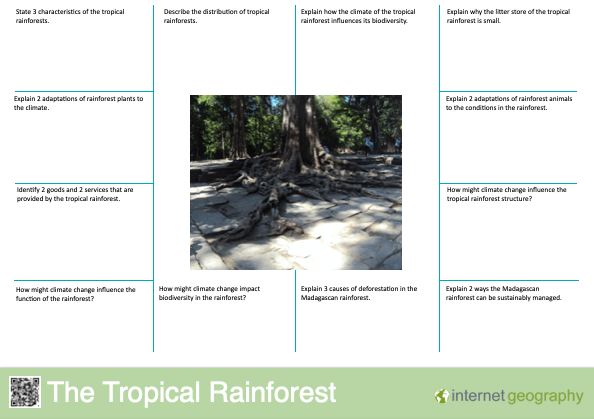 Edexcel A The Tropical Rainforest Revision Mat