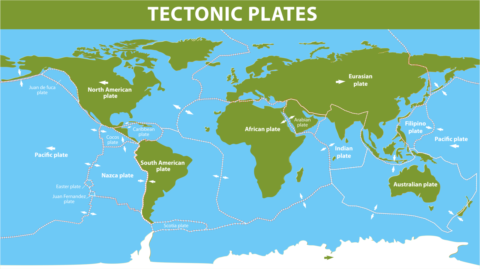 A map to show the main tectonic plates