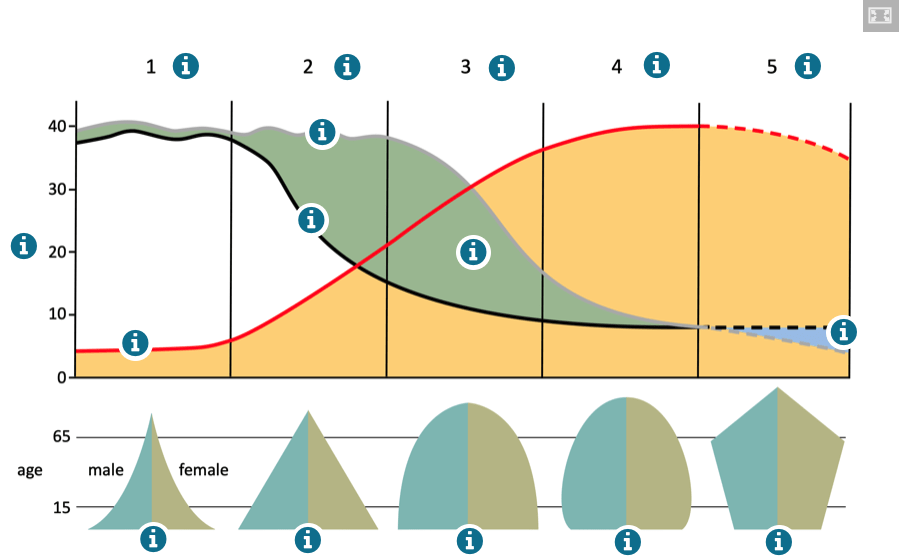The Demographic Transition Model Interactive Diagram
